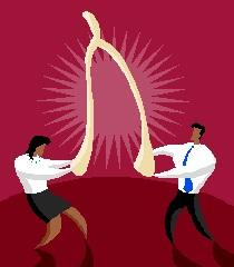 2014-11-11 splitting wishbone